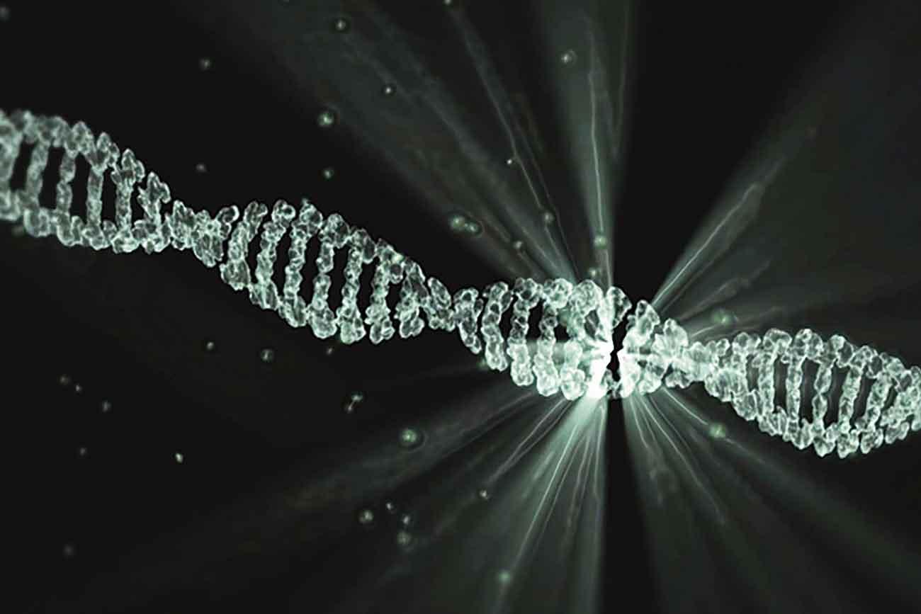 Definizione di cDNA