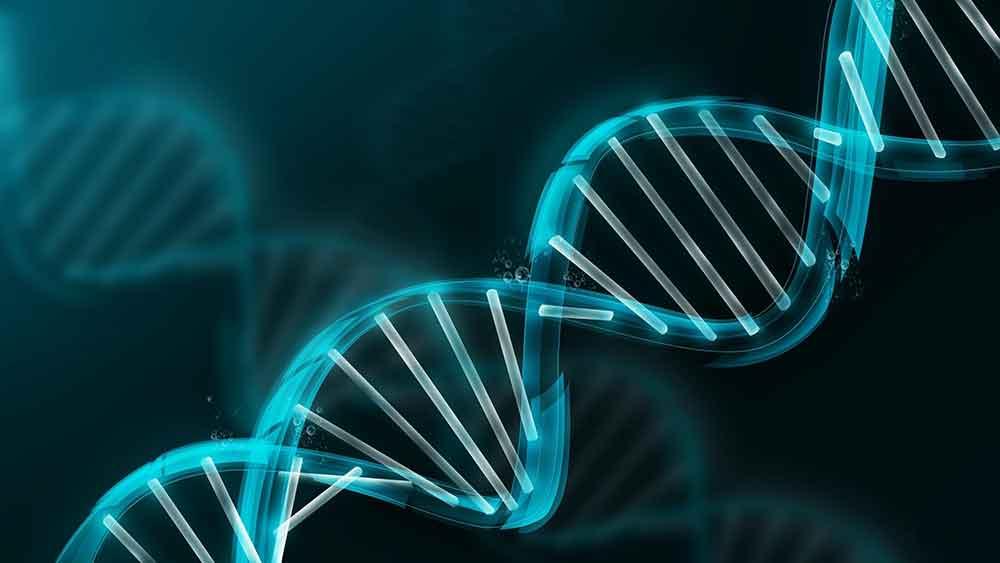 Definizione di imprinting genetico