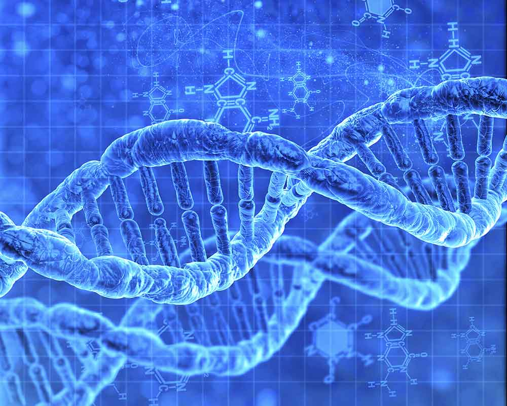 Definizione di Aneuploidia cromosomica