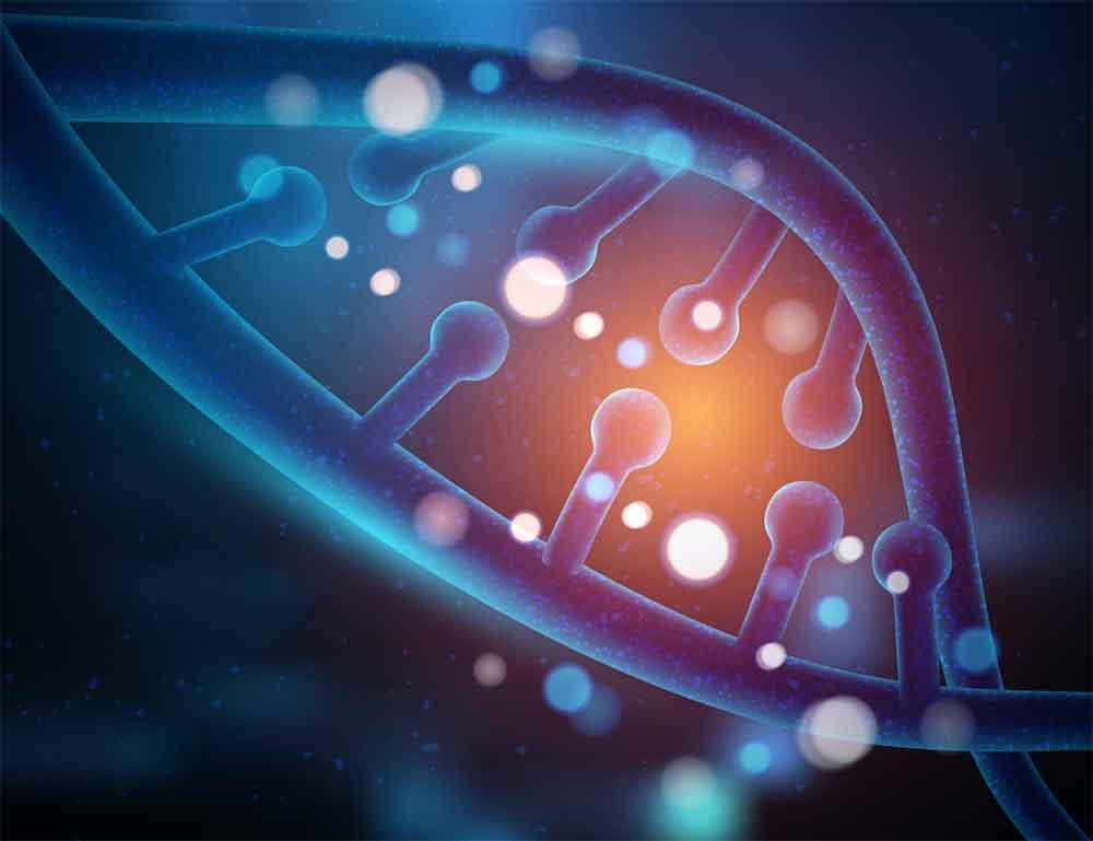 Definizione di DNA fetale