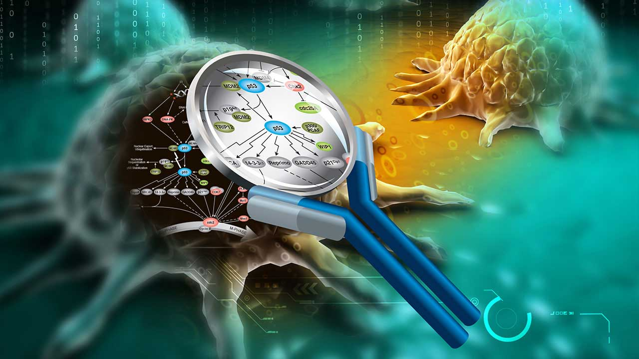predisposizione genetica tumori